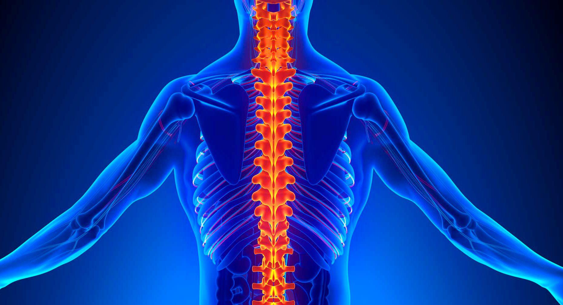Секреты здоровых суставов и позвоночника