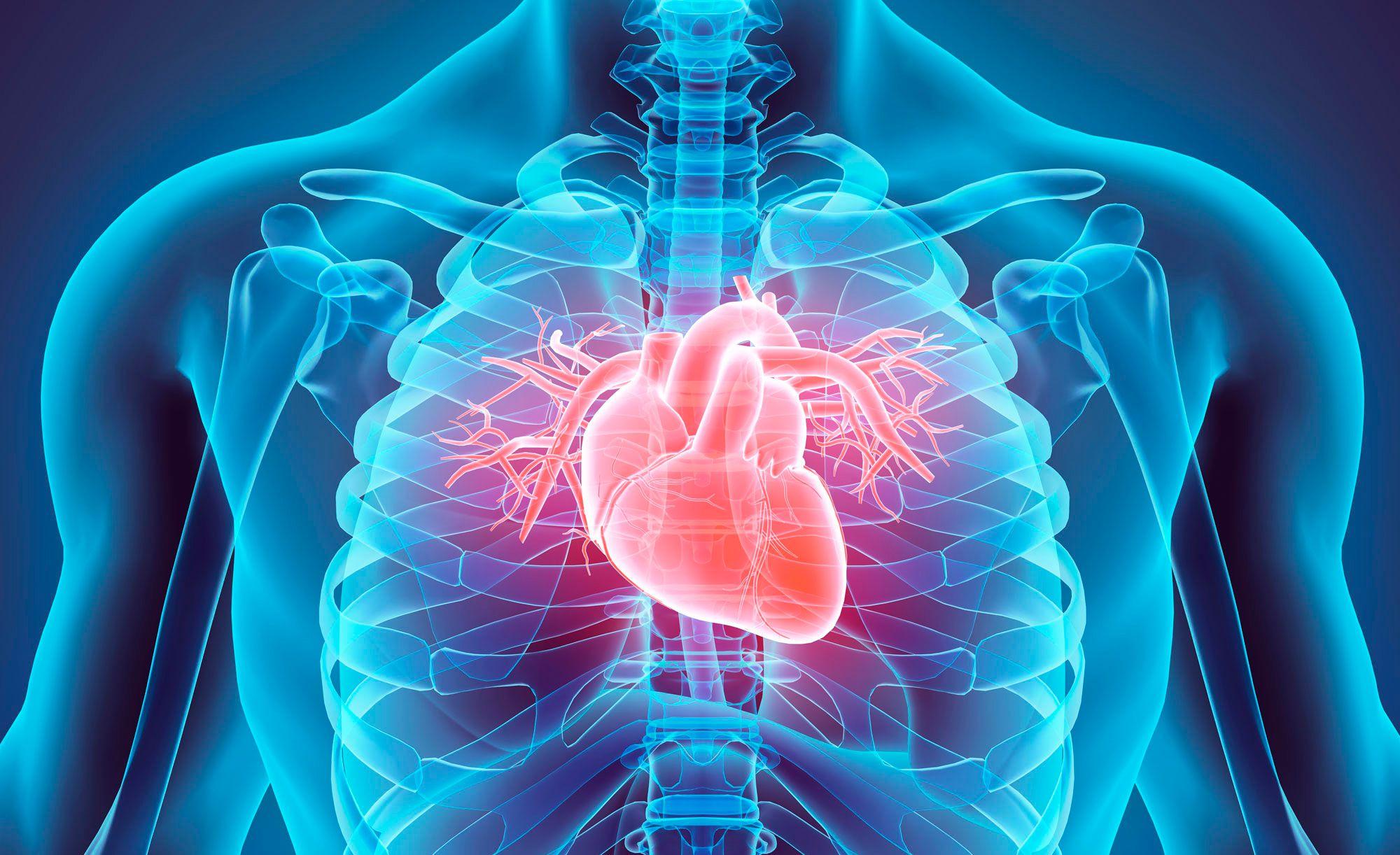Пороки сердца заболевание