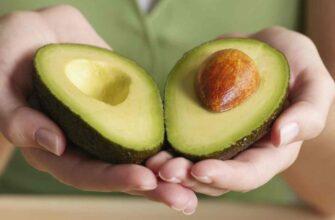 7 забавных фактов об авокадо