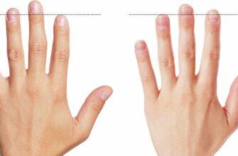 Сравните длину пальцев и выясните
