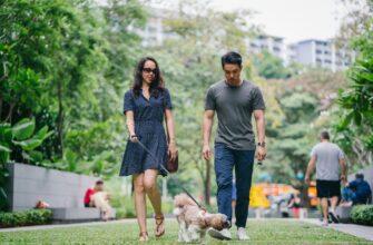 Ежедневная прогулка может добавить к вашей жизни 7 лет